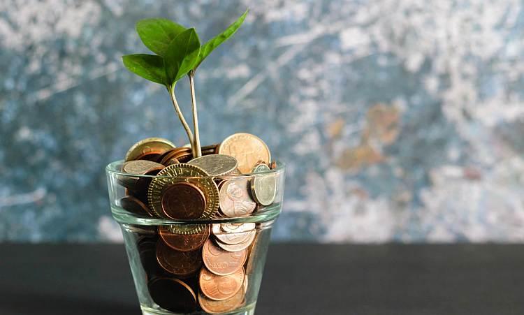 Jak zarobić pieniądze w młodym wieku?